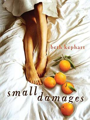Book Review | Small Damages | Beth Kephart