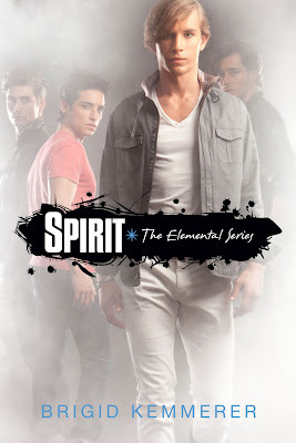 Book cover for Spirit by Brigid Kemmerer